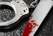 جزئیات قتل مدیرمسئول یک نشریه داخلی در تهران
