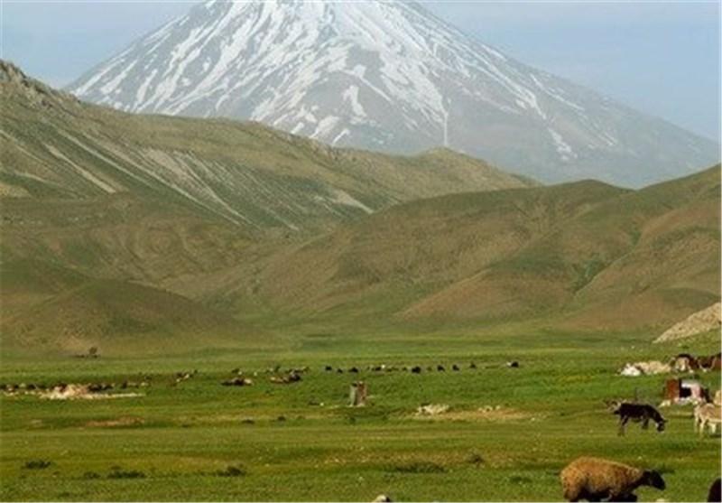 20 میلیارد تومان اعتبار برای اجرای طرحهای منابع طبیعی استان کرمانشاه تخصیص یافت