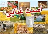 امکان افزایش 5درصدی ضریب امنیت غذایی کشور در سال جهش تولید