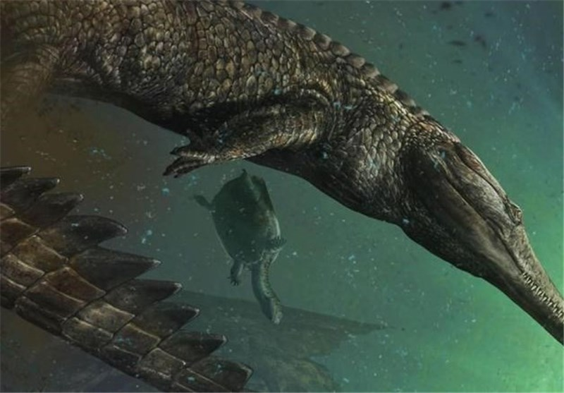 Remains of Largest Maritime Crocodile Ever Discovered Found in Tunisia