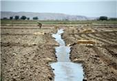 اجرای آبیاری میکرو در سطح 700 هکتار از اراضی کشاورزی استان بوشهر