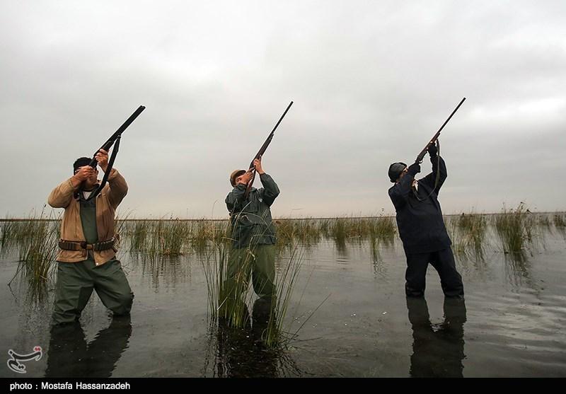 فصل شکار پرندگان
