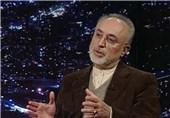 صالحی: در صورت لغو برجام اجرای پروتکل الحاقی را متوقف میکنیم