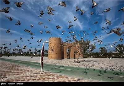 پرندگان باغ راه ایرانی در کیش