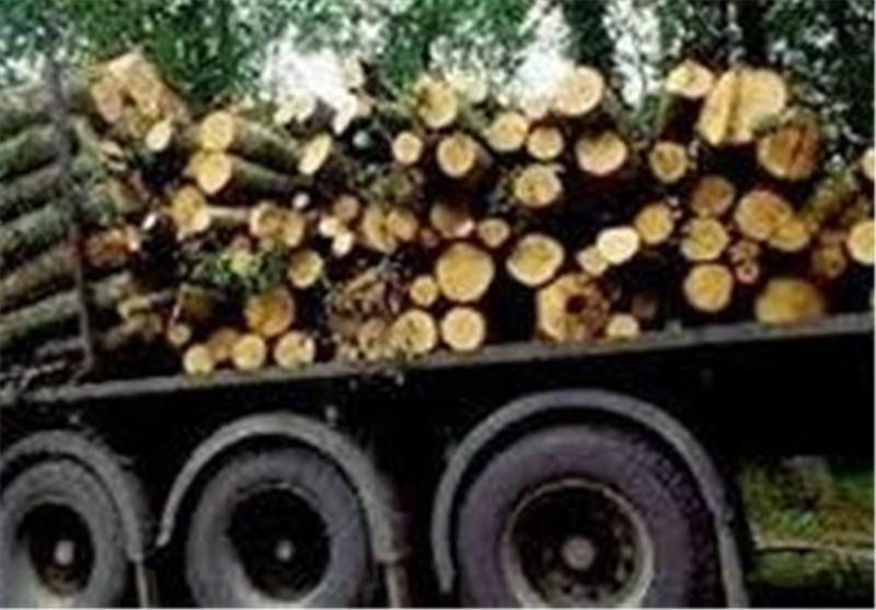 محموله قاچاق چوب جنگلی در اردبیل کشف و ضبط شد