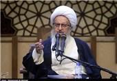 آیتالله مکارم شیرازی: شرکت نکردن در انتخابات سبب خوشحالی دشمن میشود