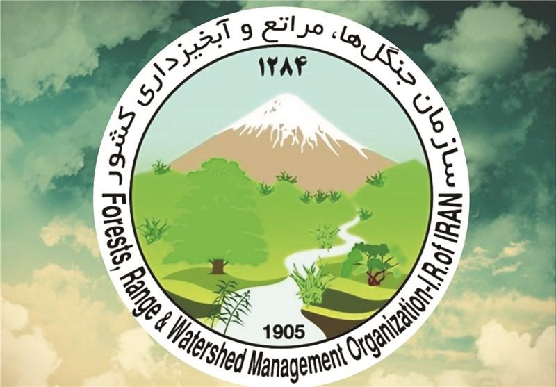 2 هزار و 774 هکتار از منابع طبیعی استان مرکزی در آتش سوخت