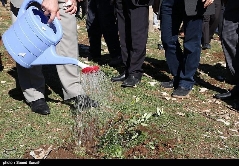 مراسم کاشت نهال به مناسبت دهه فجر در لرستان