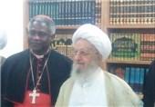 آیت الله مکارم شیرازی: سلام و تحیت ما را به جناب پاپ برسانید