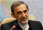 Velayati Raps US Supreme Court Ruling to Seize Iran's Assets
