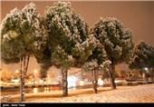 بارش برف در شیروان