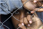 پناهندگان3