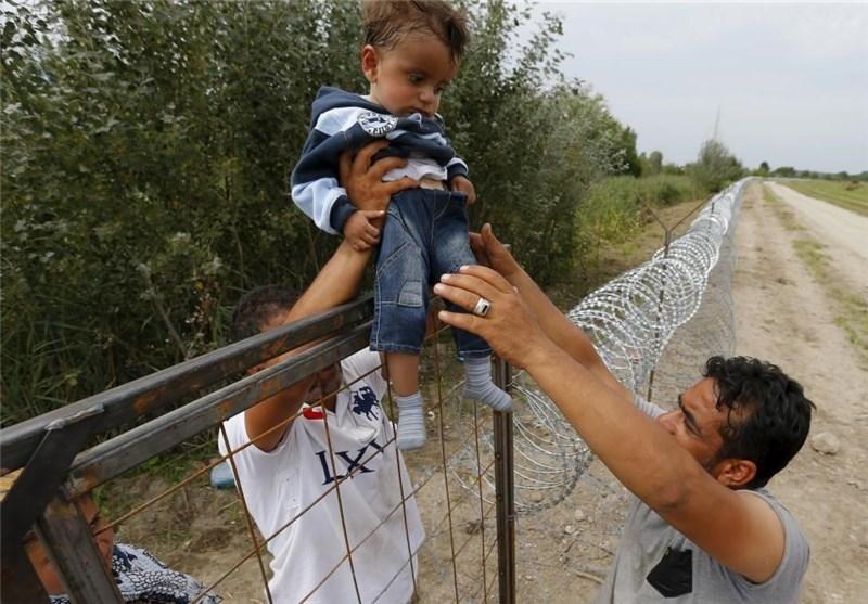 پناهندگان11
