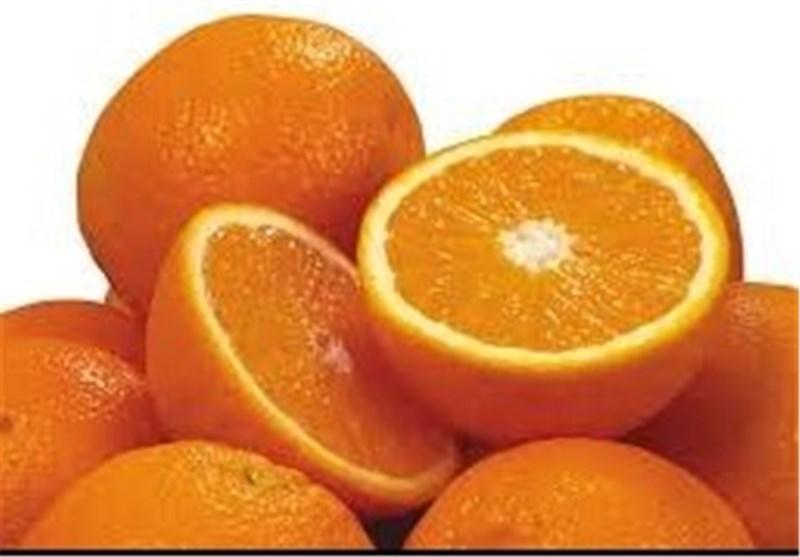 قیمت عمده فروشی ۵۴ قلم میوه و صیفی/ پرتقال ۶ هزار تومان شد + جدول