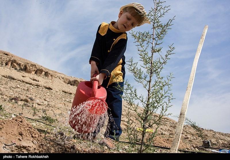 پویشی که خیلیها را در تهران صاحب درخت میکند