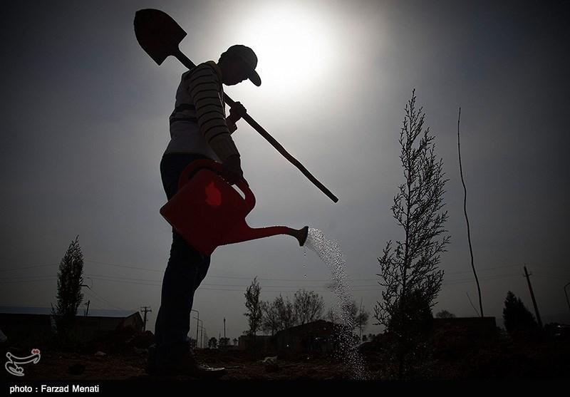 روز درختکاری در کرمانشاه
