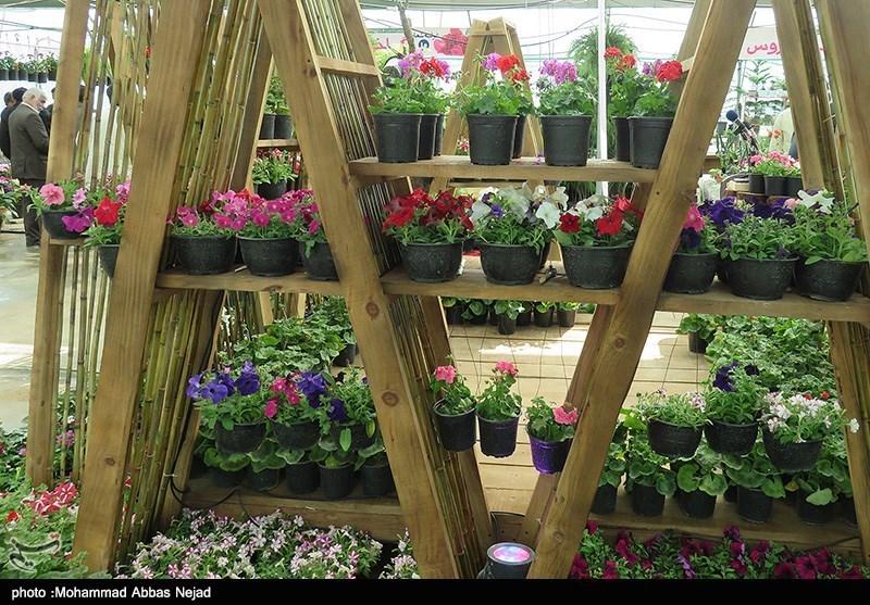 نمایشگاه گل و گیاه در شاهرود