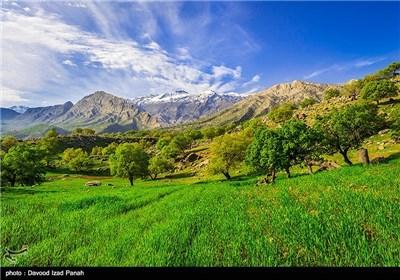 طبیعت بهاری گچساران در کهگیلویه و بویر احمد