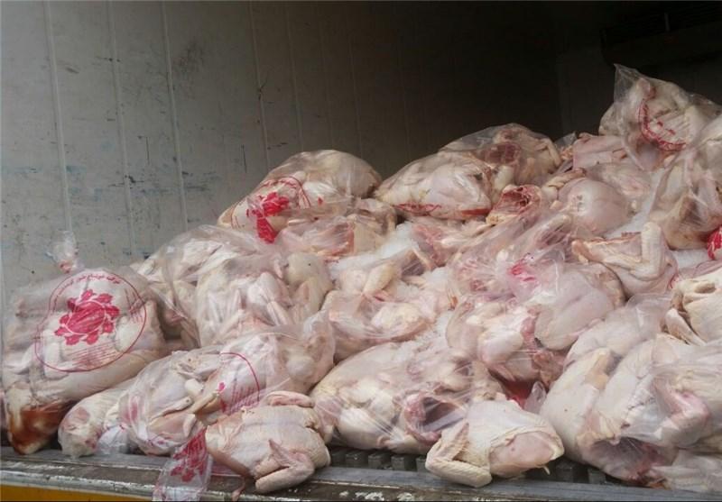عراق واردات مرغ و تخم مرغ ایران را ممنوع کرد+ سند