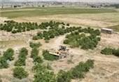 82 هکتار از اراضی ملی استان مرکزی از متخلفان پس گرفته شد