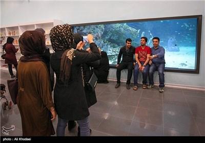 اکواریوم مدینة اصفهان