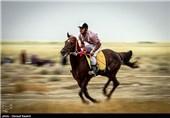 مسابقات سوارکاری در شهر مٌهر