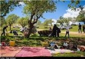 روز طبیعت در ایلام