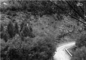 انتشار مواد نفتی از سوی برخی از ویلاها در جاده چالوس؛ برخورد با تخلیه فاضلاب در جاده