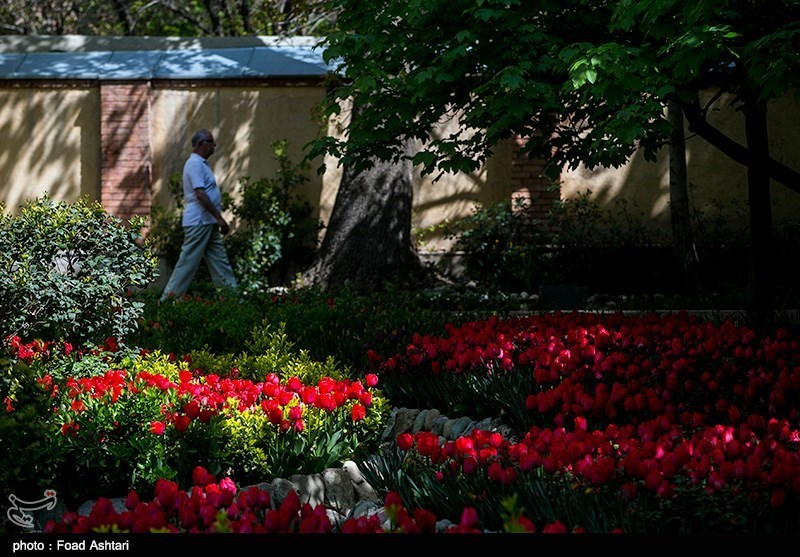 بوستان علی محمد مختاری در تهران