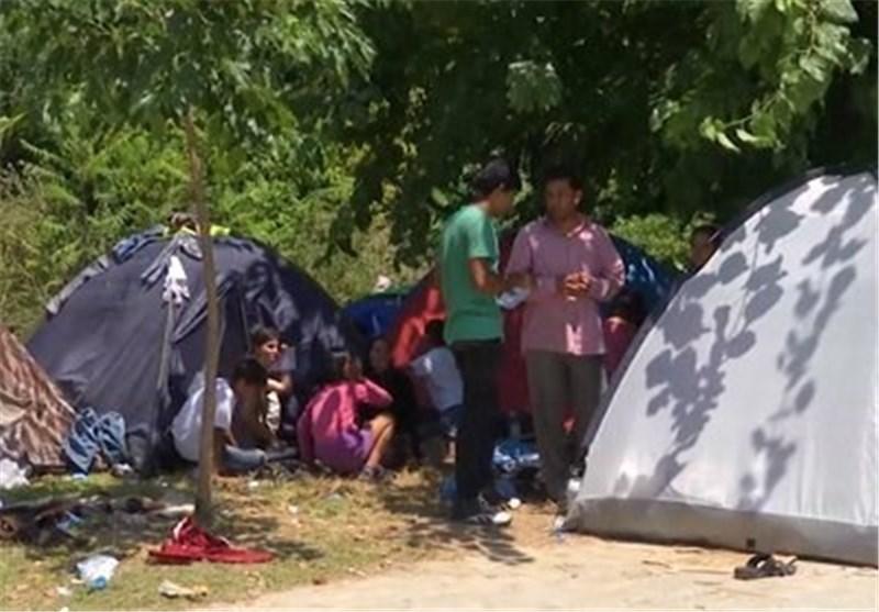 مهاجرین افغانستانی در آلمان . 7