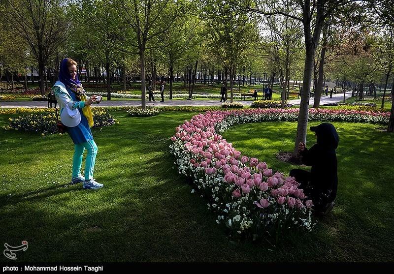 کانال بوشهر خبرگزاری تسنیم - جشنواره لاله ها در پارک ملت مشهد