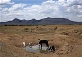 خشکسالی آفریقا5