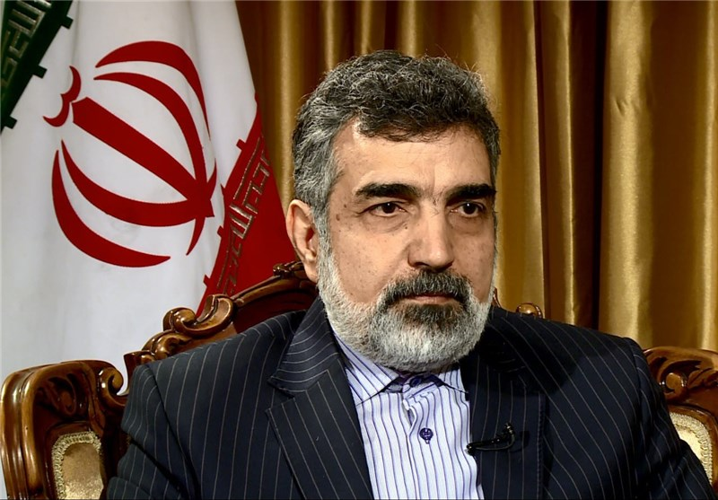 Iran, EU Can Cooperate on Nuclear Technology: Official