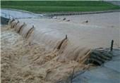 خسارات عدم ساخت سد بختیاری 50 برابر هزینه ساخت این سد بود/ می توانیم تهدید سیل را به فرصت تبدیل کنیم