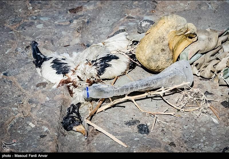پاک سازی زباله های حاشیه پل میان گذر دریاچه ارومیه