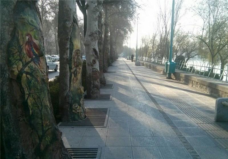 نقاشی روی درخت حاشیه زاینده رود صفهان