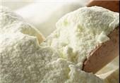صادرات شیر خشک شتر آزاد شد