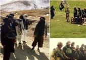 طالبان و داعش