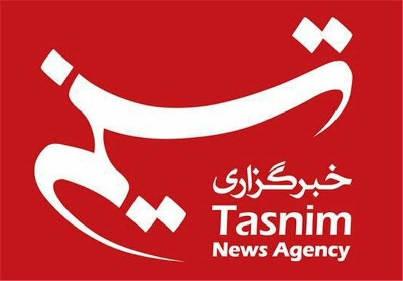 لوگوی تسنیم/ آرم تسنیم / خبرگزاری بین المللی تسنیم