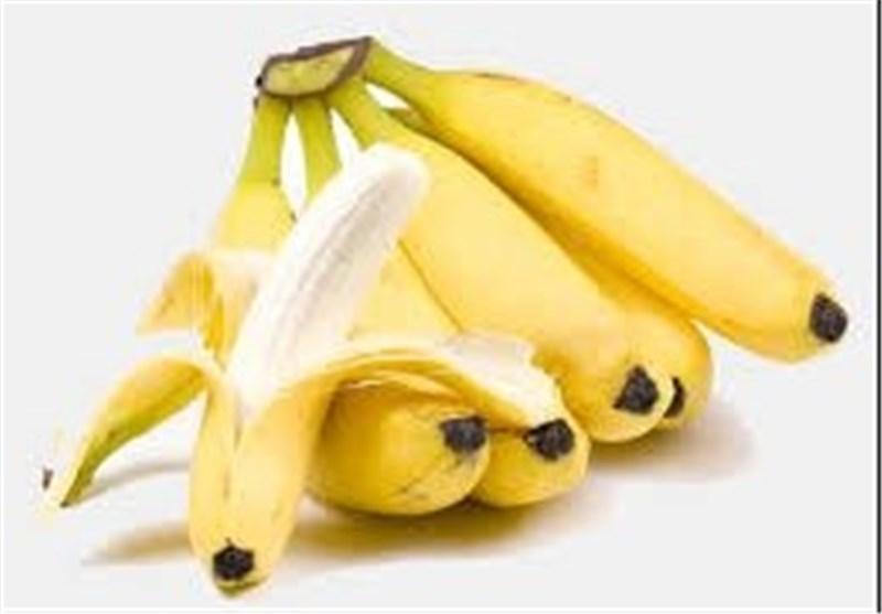 ایرانی ها سالانه 570 هزار تن موز میخورند/ صادرات 500 میلیون دلار میوه های گرمسیری