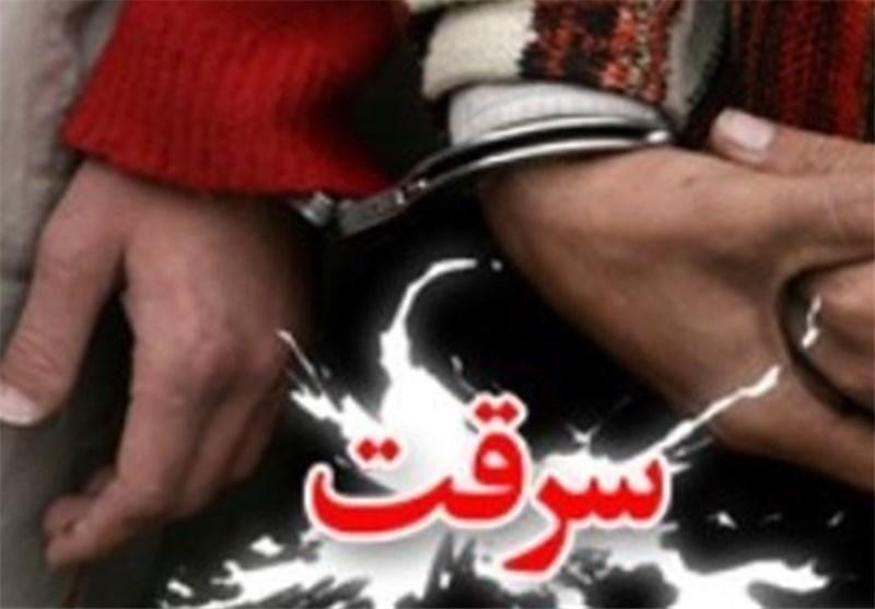 سارق حرفهای استان مازندران دستگیر شد