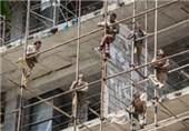 160 هزار کارگر تقلبی برای دریافت بیمه خود را کارگر ساختمانی جا زدند