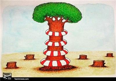 کاریکاتور/ جنگلها را نجات بدهیم