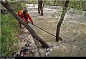 1770 واحد مسکونی غیرمجاز در بستر و حریم رودخانههای استان کرمانشاه وجود دارد