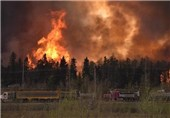 Canadian Wildfire Forces Evacuation Order for Entire City