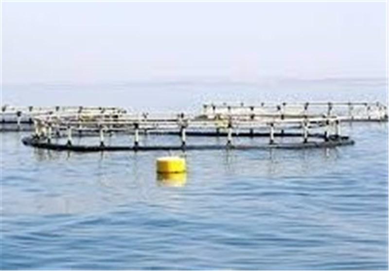 Iran, Norway Sign 13 Deals on Fish Farming