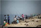 مسابقات ماهیگیری خانوادگی در کیش