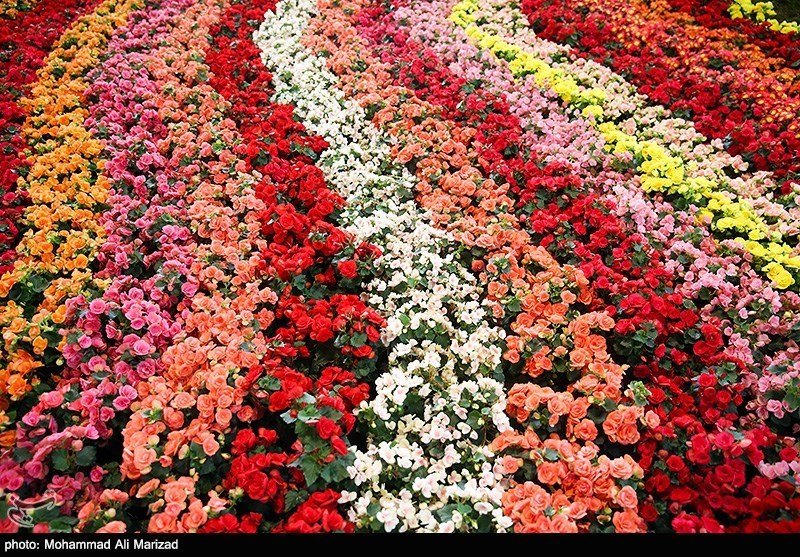 مراسم افتتاح چهاردهمین نمایشگاه بینالمللی گل و گیاه