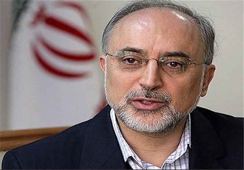 صالحی : ایران تنضم بشکل جدی الى مشروع الانصهار النووی