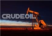 تعداد سکوهای نفتی فعال آمریکا طی هفته گذشته افزایش یافت